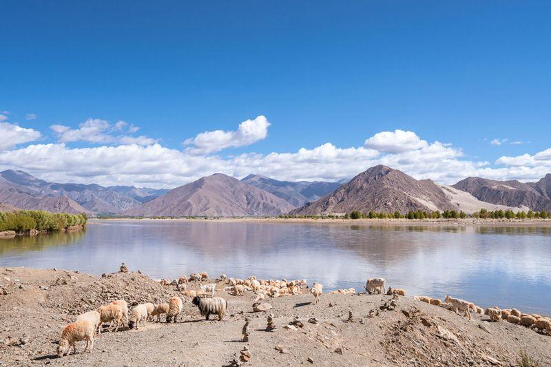 Holy Lhasa Tour